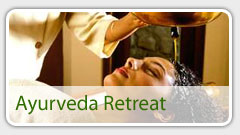 kerala ayurveda packages